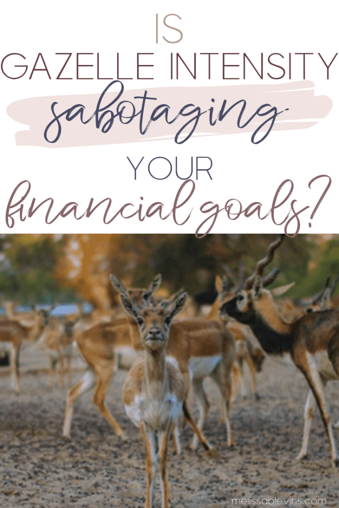 Gazelle Intensity sabotaging financial goals