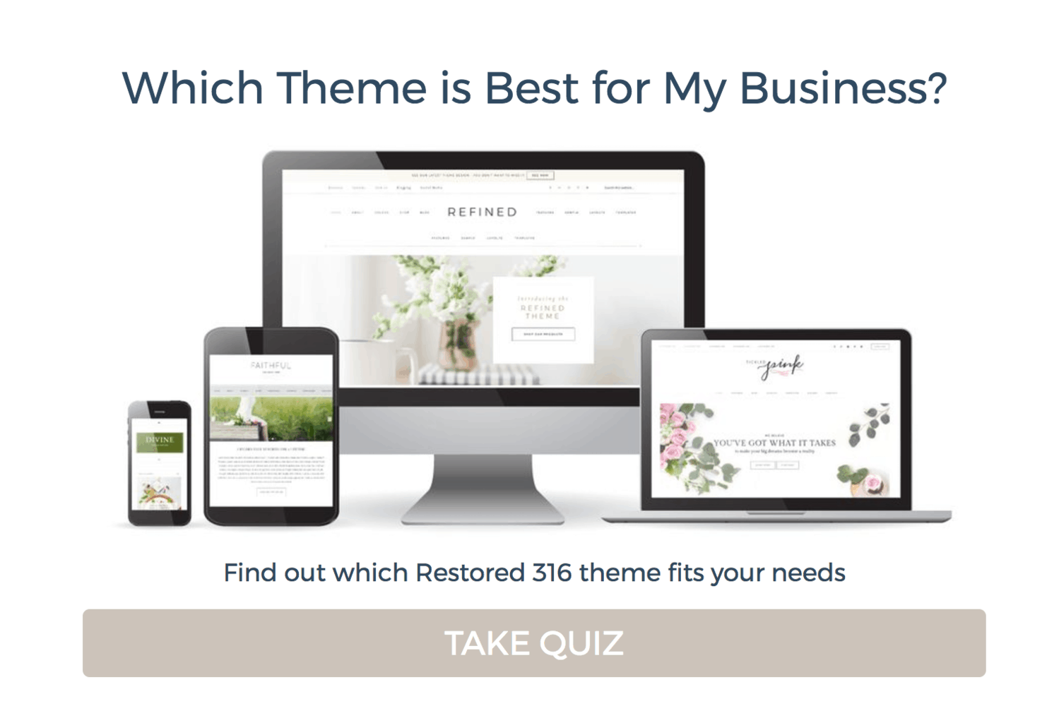 Restored 316 Which Theme is Best for my Business