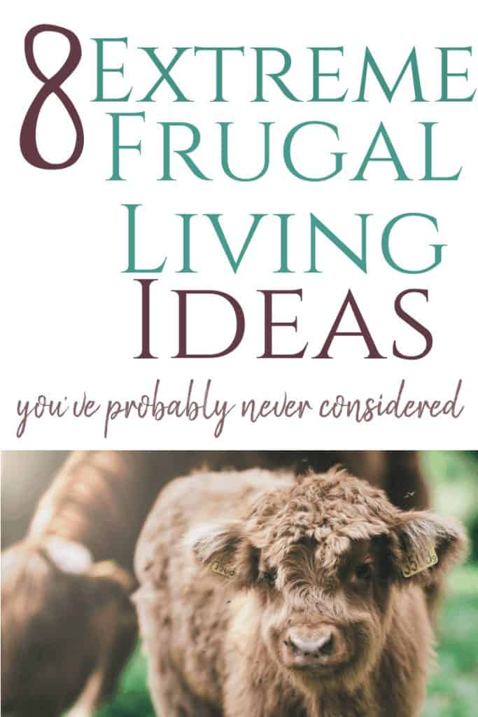 extreme frugal living tips